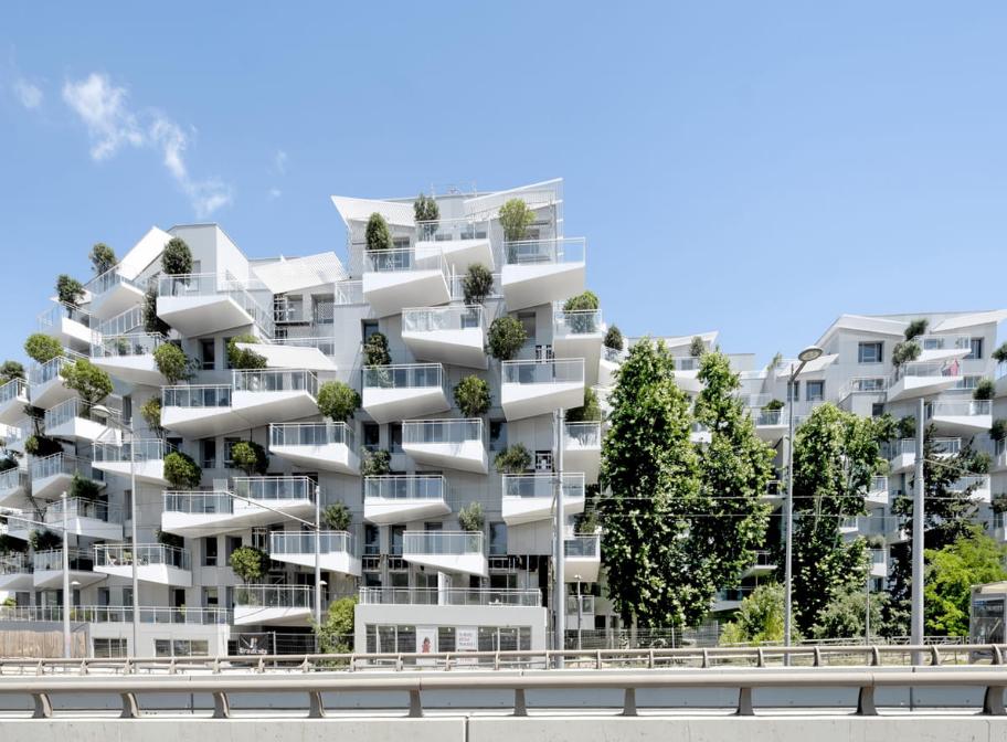 赏析 | 树之公寓