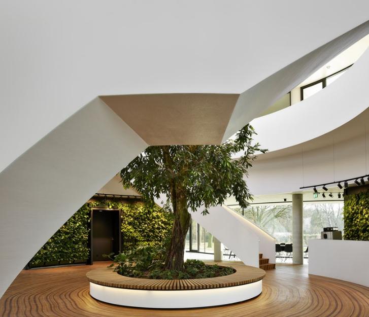 试试将树木的年轮无缝衔接成地板如何?