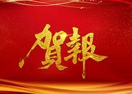 【中开建筑|艺型】中标河南南偃师市新区体育场一期工程