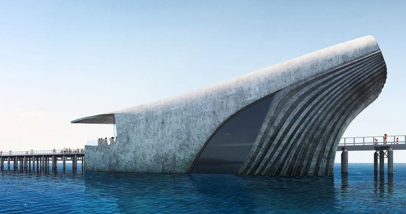 【赏析】浮出水面的鲸――澳大利亚水下观测中心